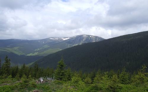 Krkonoše Mountains, 28.05.2009.