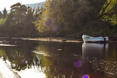 Today's Autumn walk (padsta5479) Tags: rowingboat boat northernireland ireland nofilters sunset autum river ngc