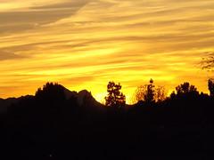 Remnants of an Arizona sunset (BKNielsen4) Tags: yellow trees nature afterglow sunset mountains paradisevalley usa arizona