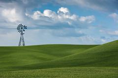 The Palouse (llabe) Tags: easternwashington spring clouds wheatfield wheat farming farm windmill palouse washington nikon d750