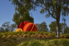 Porta 2007 (phunnyfotos) Tags: phunnyfotos australia victoria vic wodonga art artwork publicart artinstallation sculpture kenraff porta2007 northeastvictoria gate entrance exit nikon d750 nikond750 colour color gumtree garden landscaping spheres spherical orange red yellow eucalypts eucalypt 2007 theflickrloungeweeklytheme