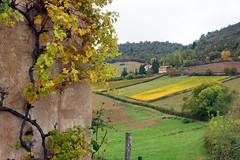 2016-10-24 10-30 Burgund 180 Berze-La-Ville