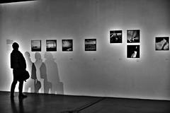 ..... (di.diana) Tags: silhouette flickrfriday msu exhibition 2016 too dabac friend love