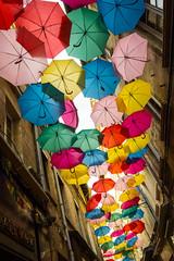 Sous les parapluies (lecointelaetitia) Tags: parapluie umbrela couleurs colors avignon france europe voyage travel
