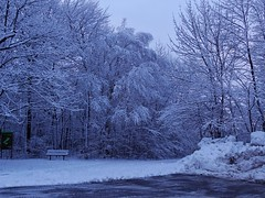 Hiver - Winter (Jacques Trempe 2,540K hits - Merci-Thanks) Tags: quebec canada stefoy hiver winter snow neige arbre tree