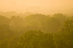 Trees of Gold (Stephen Gardiner) Tags: sunset sun toronto ontario rain weather pentax 100300 2013 k20d highparknorth