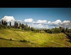 cypress trees on the horizon (TheOtherPerspective78) Tags: italien trees sky italy green clouds canon landscape holidays italia horizon meadow wiese himmel wolken tuscany chianti cypress grn toscana landschaft horizont toskana zypressen ef24105l eos5dii theotherperspective78