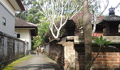 De Tanah Lot  Suraberata (thiery49) Tags: road summer bali indonesia walk route t indonesian chemin indonesien tanahlot balinese indonsie balinais