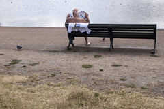 IMG_2135 (Amelia Collins) Tags: park city flowers trees england lake man flower tree men london water gardens river garden bench person reading newspaper football chair chairs seat newspapers lakes parks read seats round supporter hydepark benches ponds pon
