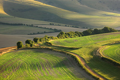 Kingston Ridge, Autumn (Alan MacKenzie) Tags: england landscape sussex farm eastsussex southdowns lewes kingstonridge southdownsnationalpark