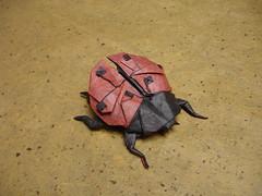 Ladybug- Kirschenbaum (shuki.kato) Tags: paper origami tissue bugs ladybird ladybug fold masters complex unryu