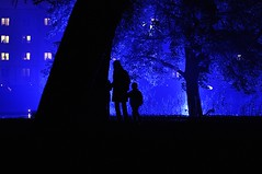 "MyFavoriteMovieScene -""The Others"" (Eggii) Tags: show blue shadow silhouette night 50mm f18 d90 nikond90 lightmovefestivallodz2013"