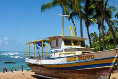 Mar Novo (Paulo_Sergio) Tags: summer brazil sun sol praia brasil lumix mar barco panasonic bahia verão praiadoforte litoral litoralnorte fz35