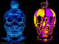The Booze Brothers (Cameron Knowlton) Tags: pink blue light shadow color dan glass up yellow closeup skulls skull lights bottle sticks nikon key long exposure glow shadows close purple shot jake crystal brothers head low blues potd spooky pack vodka elwood product d600 aykroyd chvdeadday vision:outdoor=0599 vision:dark=0743