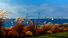 Claiborne Pell Newport Bridge (Timothy Valentine) Tags: bridge large 1013 goatisland newportri sliderssunday