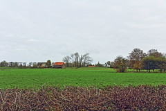 Ooij (RW-V) Tags: autumn nijmegen herbst herfst ooij ooijpolder geldersepoort canonefs1755mmf28isusm canoneos60d lautumne