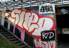 graffiti (wojofoto) Tags: streetart graffiti shep artic hof zaandam wojofoto