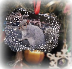 Christmas Portrait #Flickr12 Days (MissyPenny) Tags: christmas holiday squirrel decoration christmastree ornament missypenny flickr12days