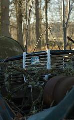Saab Wreck (peter_hasselbom) Tags: 50mm junk dump litter tm wreck scrap saab saab96 saabv4
