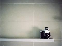 Pentax 67II + Portra 800 (MaNgO22) Tags: 120 film analog mediumformat pentax kodak negative portra800 kodakportra800 pentax67ii pentacon6ttl