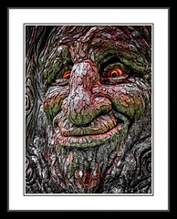 Oaken Expression (FotoGrazio) Tags: old las vegas tree texture face look mouth nose happy hotel scary oak eyes expression air wayne nevada content sunny lips glad bark jubilant wise bellagio merry jolly wisdom cheerful joyful elated blessed appearance overjoyed joyous thrilled pleased blest contented ecstatic rapt gleeful blithe aspect delighted blissful walkingonair gratified grazio cockahoop delighed fotograzio countenancepleased overthemooninformal oncloudnineinformal blitheoaktreefacebarktexturepainterlyarteyesnosemouthwisescarywaynegraziofotograziobellagiohotellasvegasneveda