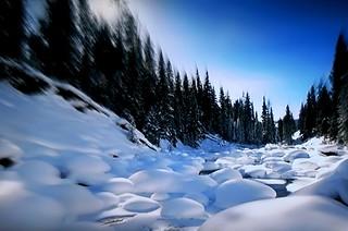 Zoom... winter.