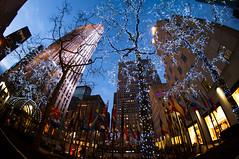 Bright lights DSC_1034 (Tania DT) Tags: nyc newyorkcity ny newyork rockefellercenter