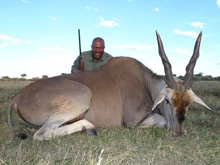 Namibia Safari - Lake Lodge 55