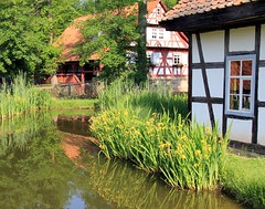 (:Linda:) Tags: reflection museum germany pond village lily thuringia yellowflower halftimbered waterplant klostervessra