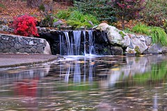 (CanMan90) Tags: beaconhillpark victoria britishcolumbia water waterfall longexposure autumn reflections cans2s canon rebelt3i canada outdoors october fall colours vancouverisland