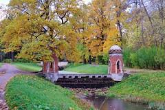 (sergeiivanovich) Tags:  stpetersburg  pushkin  tsarskoyeselo  park  catherinepark  autumn redcascade