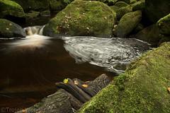 Padley Gorge (Trojan Wonder) Tags: padley gorge waterfall moving swirling green leaves rocks wood brown moss white water flowing