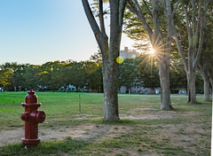 Evening Burst_on_Campus_10.7.16 (Alienation_Station) Tags: universityofrhodeisland evening light flare star fire hydrant