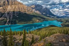 Pretty Peyto (Philip Kuntz) Tags: peytolake peyto peytoglacier billpeyto waputikrange caldronpeak mistayariver banff banffnationalpark icefieldsparkway alberta canada