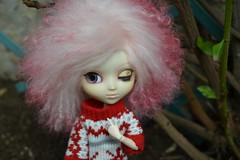 DSC_4661 (DollEmiou) Tags: kotori pulliptiphona custo mohair pink obitsu cutedoll doll pullip