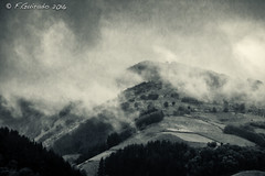 Mystic mist! (F.Guirado) Tags: 2011 navarra canon 1785mm mist niebla fog mountain trending blackwhite blancoynegro blackandwhite canon40d 40d brouillard boira bruma hill mystic monocromtico monochrome wow weather sky bw