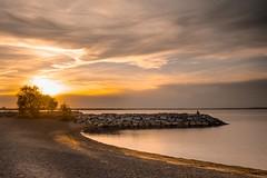Britannia Sunset (janet.capling) Tags: britannia ottawa ontario golden hour glow glowing water rocks sun beach sand tree fisherman