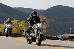 Harley-Davidson Heritage Softail 1610164663w (gparet) Tags: bearmountain bridge road scenic overlook motorcycle motorcycles goattrail goatpath windingroad curves twisties
