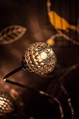 HELIOS 44-2 58mm Vs. Led Light (Geoff Moore UK) Tags: helios winter nights autum darkness light creativity sparkle led shining focus