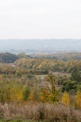Hazy Autumn (Al Henderson) Tags: colours autumn cranfield bedfordshire england unitedkingdom gb