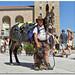 peregrino-caballo-perro