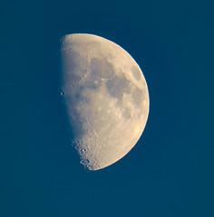 Moon - waxing -    Day 313 / 366 (Wayne~Chadwick) Tags: 2016fall