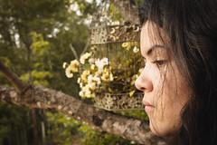 (MaiDart) Tags: natureza mulher margarida feminino gaiola