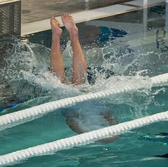2C041040 (roel.ubels) Tags: len euro league waterpolo sport topsport utrecht uzsc 2016 krommerijn women