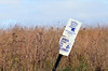 Bison Scratching Post (U.S. Fish and Wildlife Service - Midwest Region) Tags: nealsmith nwr refuge nationalwildliferefuge nature landscape iowa ia fall october prairie sign scratchingpost