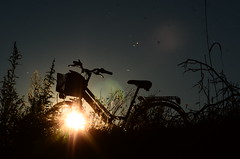 The sun in the bike at sunset (viola.v94) Tags: bycicle bicicletta sunset sun nature shadows ombra