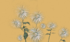 FloresPietMondrian_011 (Visualística) Tags: flores pietmondrian mondrian arte art interpretaciones abstracción paráfrasis versiones análisis flowers flower flor vegetal