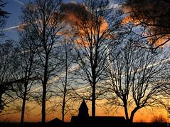 Couleurs d'hiver (Fontenay-sous-Bois - Officiel) Tags: fontenay fontenaysousbois regionparisienne valdemarne iledefrance 94 94120 sunset eglise clocher ciel nuages cloud nature outside church