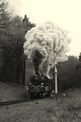 Distant standards (feroequineologist) Tags: 76084 76038 76079 railway train steam northyorkshiremoorsrailway nymr