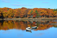 November reflections (Robert Dennis Photography) Tags: kennebunkport kennebunk kennebunkriver autumn fall foliage november dories canoes